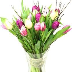 Tulpenstrauss lila