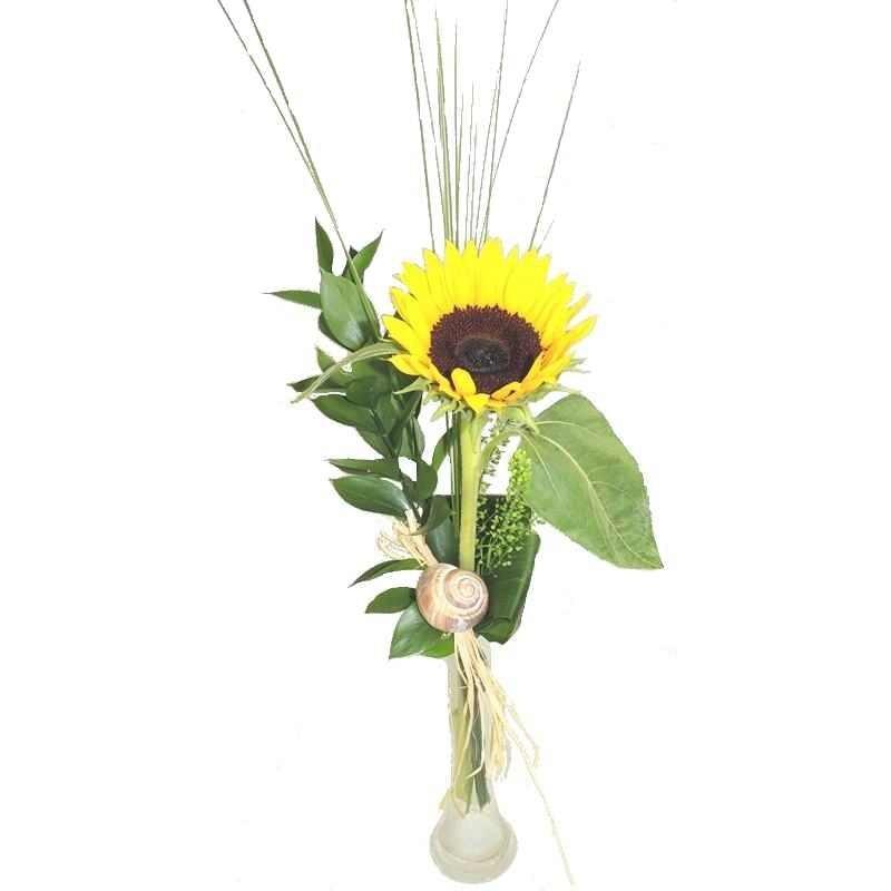 Sonnenblume pur