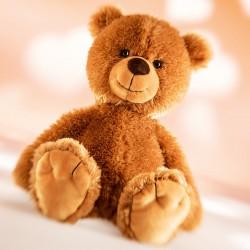 Teddy Tom