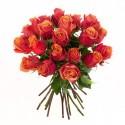Ein Rosenbund in orange