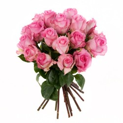 rosa Rosen als Rosenstrauss arrangiert