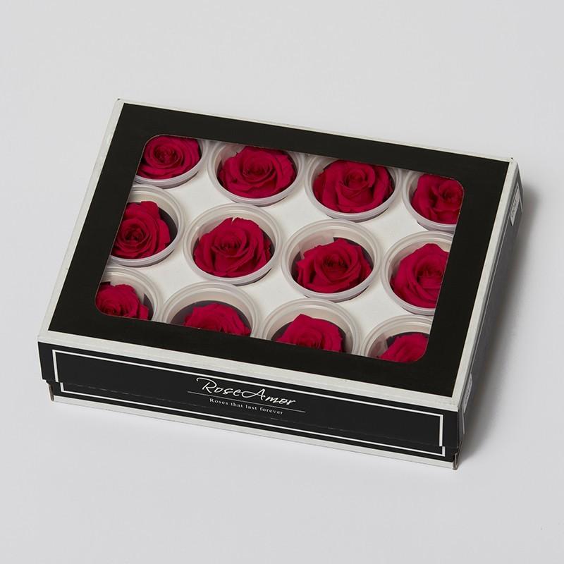 6 rosen stabilisiert. Black Bedroom Furniture Sets. Home Design Ideas