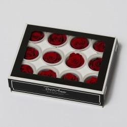 Einzelrosen RED03XS