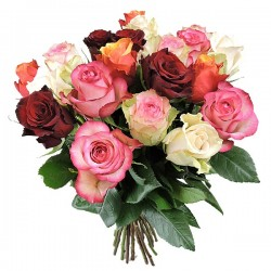 langstielige Rosen bunt gemischt