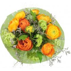 Pünktlich zum Frühling in orange