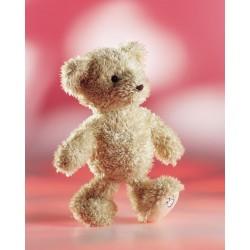 Teddy Luca