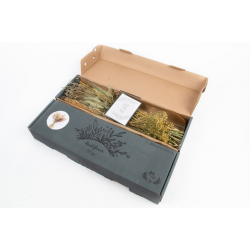 DIY Trockenstrauss Box Natur
