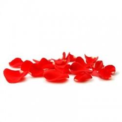 Echte, rote Rosenblätter zum Streuen 100g